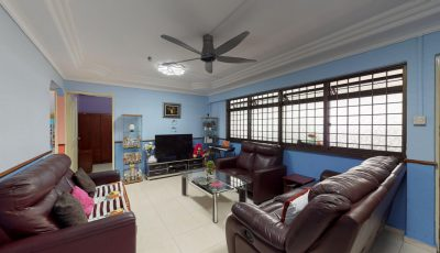 663A Jurong West St 65 3D Model